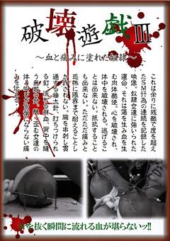 破壊遊戯3 ~血と痛みに塗れた奴隷~
