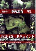 車内調査 淫乱行為ドキュメント1