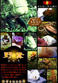 野糞 ギャルの野糞を徹底解剖2