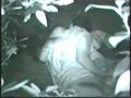 盗撮戦士ナイトライダー5号 公然猥褻の性態を暴け! 6