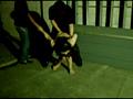 全裸で逃げながら銃で撃たれ、最後に犯されるビデオ 9