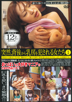 突然、背後から乳房を犯される女たち1