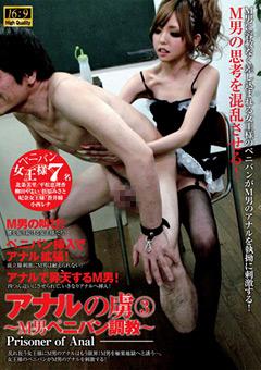 【蒼井瞳動画】アナルの虜3-~M男ペニバン調教~-M男