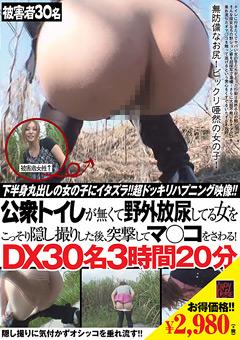 公衆トイレが無くて野外放尿してる女をこっそり隠し撮りした後、突撃してマ○コをさわる!DX30名3時間20分