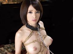 【エロ動画】人妻女雀士 雪菜×奴隷ペットのエロ画像