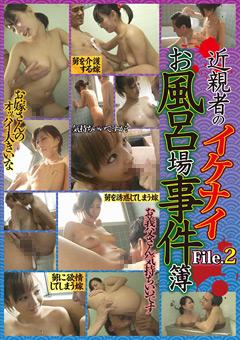 「近親者のイケナイお風呂場事件簿 File.2」のパッケージ画像