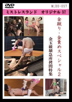 「金蹴り・金責めスペシャル 2」のパッケージ画像