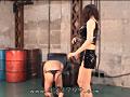奴隷志願の日々 魅羅 12