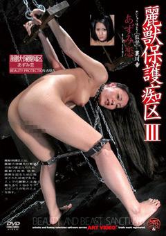 「麗獣保護痴区 3 あずみ恋」のパッケージ画像