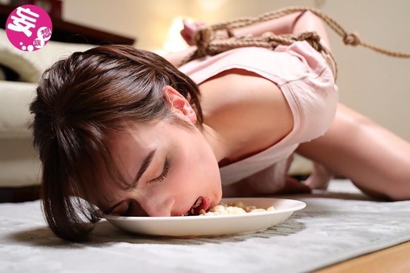 侵入犯 美しすぎる議員への欲情 西田カリナ