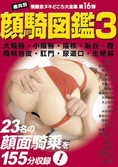 顔騎図鑑3