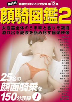 顔騎図鑑2