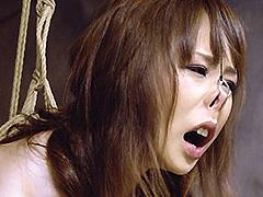 【エロ動画】人妻Mハード調教Return2の人妻・熟女エロ画像