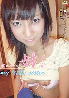 僕の好きな妹2