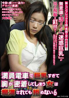 「満員電車で巨乳すぎて胸が密着してしまう女は痴○されても拒めない 6」のパッケージ画像