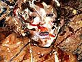 美しい顔が汚れ、さらに美しく変貌していく様は聖女と