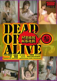 【アズサ動画】DEAD-OR-ALIVE-M男格闘転落遊戯-参-M男