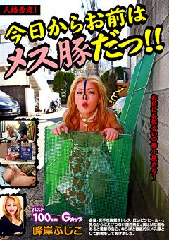 「人格否定!今日からお前はメス豚だっ!! 峰岸ふじこ」のパッケージ画像