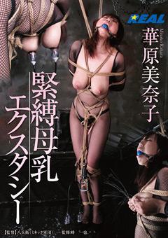 「緊縛母乳エクスタシー 華原美奈子」のパッケージ画像