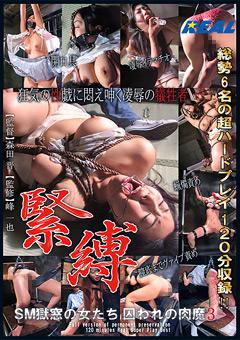 「SM獄窓の女たち 囚われの肉魔 3」のパッケージ画像