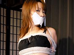 【エロ動画】THE RYOKO IZAWA BONDAGE PHOTO BOOKのSM凌辱エロ画像