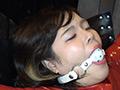 Rubber Mamia Fantasy~変態ラバー女調教日誌~