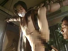 アートビデオ名作シアター SM肉欲遊戯3
