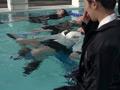 冬服浮力競技 2