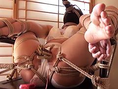 【エロ動画】【動画】家畜奴隷夫婦の飼育記録 PART2のエロ画像