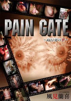 【ふうか動画】PAIN-GATE-~向日葵の華~-SM