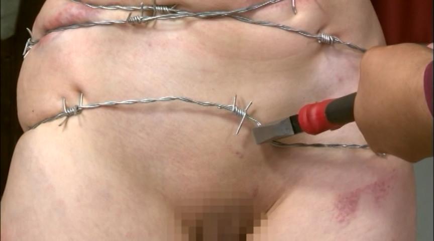 PAIN GATE 幼肢媚胎