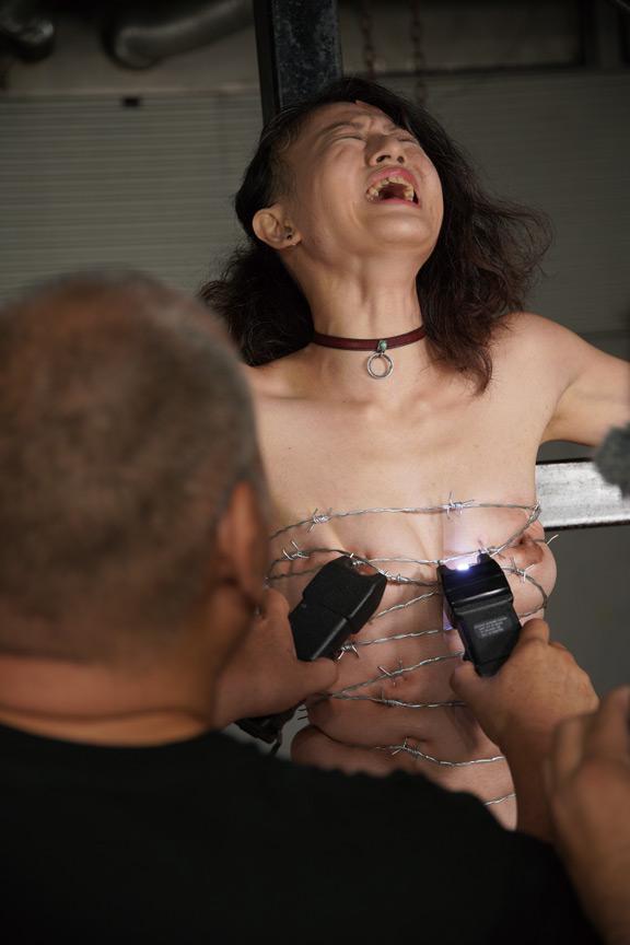PAIN GATE 四肢噴塵の画像6