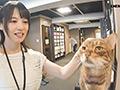 橋本菜々 35歳 第3章 6年ぶりの生姦SEX