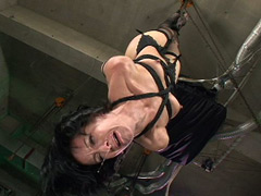 「吊り緊縛」のパッケージ画像