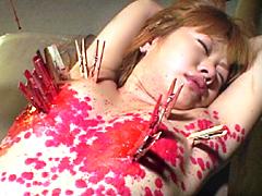 【エロ動画】緊縛調教図鑑14 深田涼子のエロ画像