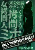 女拷問人ミホ File No.002