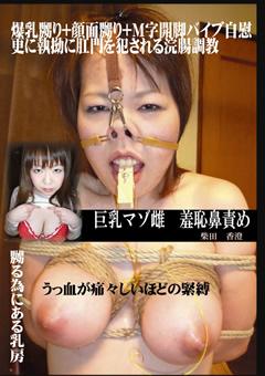 巨乳マゾ雌 羞恥鼻責め 柴田香澄