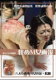 「惨めM女画報 拷問系調教結集 陰惨調教の章」のパッケージ画像