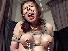 THE NOSE COLLECTION-13 ~個性派美熟女鼻盛り耽美会~