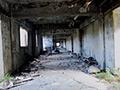廃墟となって何十年もたつアパート、ホテル、病院…。戦後の日本の人々の生活を支えてきた建造物たち。その役割を終え、時間と共に風化したその建造物を9か所収録!かつては輝きを放っていた建造物が、人々から忘れ去られ、風化した現実を切り取った、廃墟映像集!