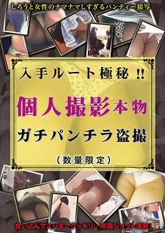 入手ルート極秘!!個人撮影本物ガチパンチラ盗撮(数量限定)