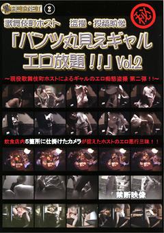 「パンツ丸見えギャル エロ放題!!」 Vol.2
