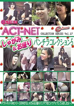 ACT-NET しゃがみ&お座りパンチラコレクション5 Vol.17
