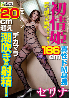 初情姫 真性ドM身長186cm セリナ