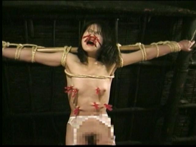 人妻密室監禁 宙吊り鞭責め・失神電流地獄 画像 3