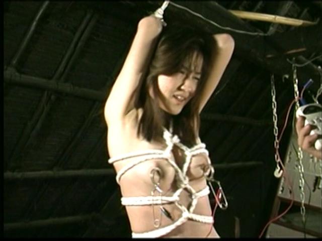 人妻密室監禁 宙吊り鞭責め・失神電流地獄 画像 13
