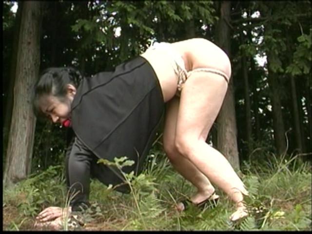 人妻調教 女犯!野外浣腸・鞭打ち・アナル責め!! 画像 5