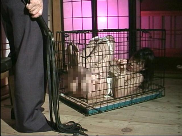 緊縛拘束監禁四時間 鞭縄地獄のサンプル画像3