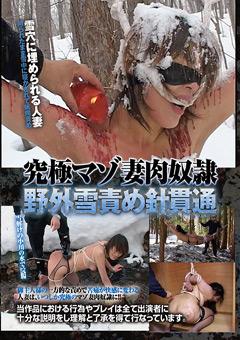 【SM動画】究極マゾ妻肉奴隷-野外雪責め針貫通
