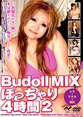 Budoll MIX ぽっちゃり4時間2
